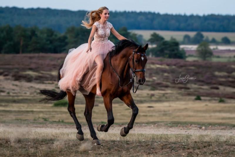Heide-Shooting-Pferd-Hund-1